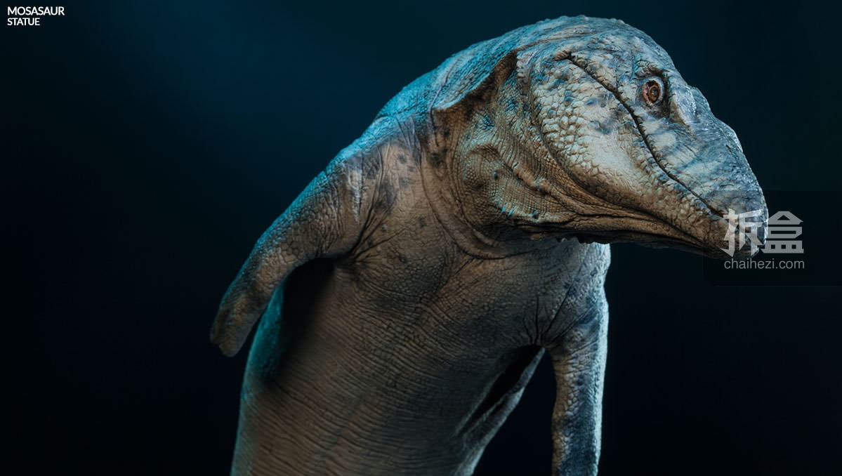 动物 恐龙 蜥 蜥蜴